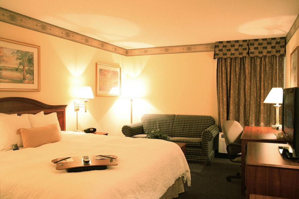 Room, Hampton Inn & Suites Atlanta Airport North I-85