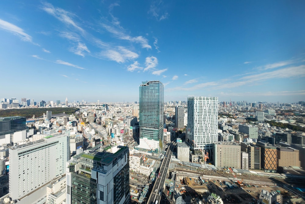 City View, Cerulean Tower Tokyu Hotel