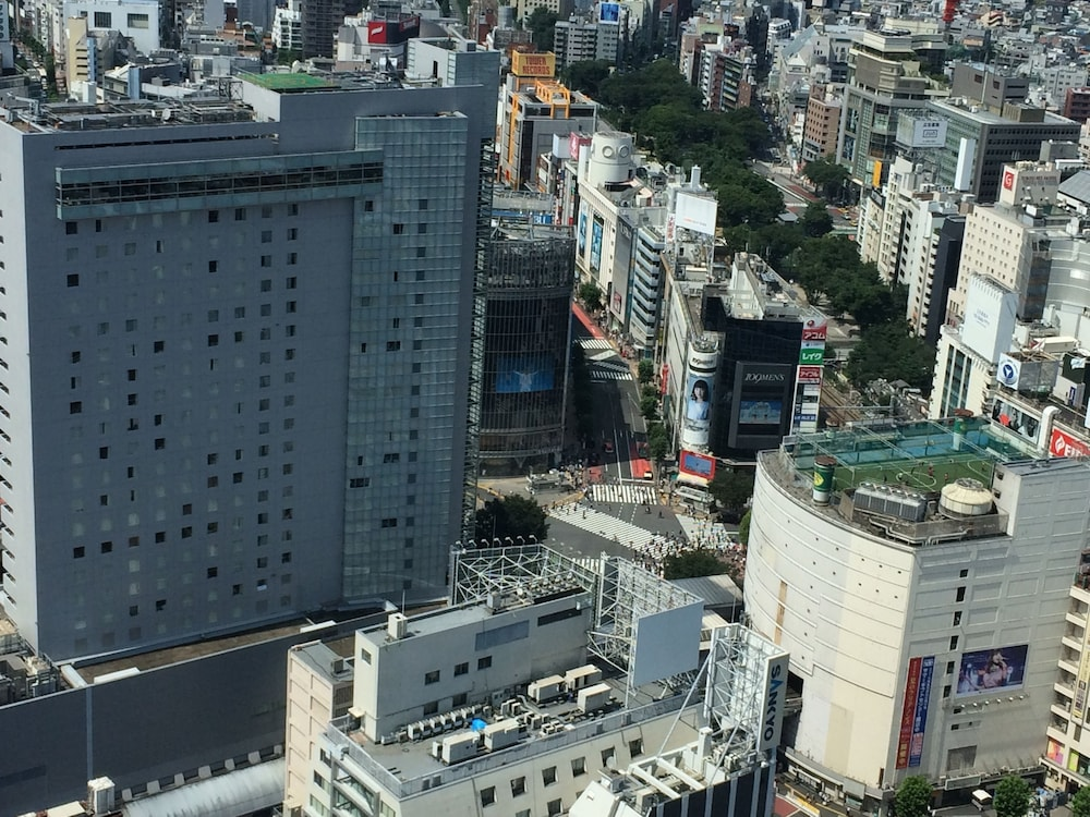 View from Property, Cerulean Tower Tokyu Hotel
