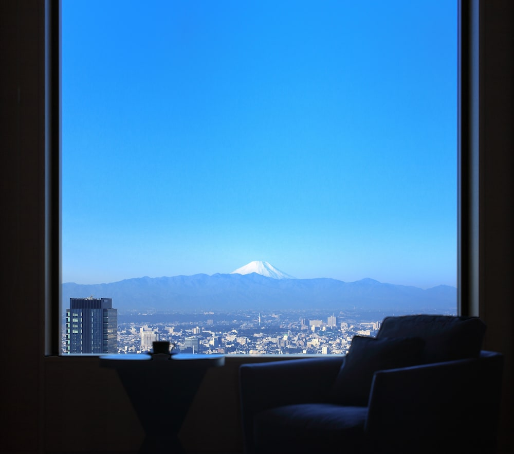 Mountain View, Cerulean Tower Tokyu Hotel