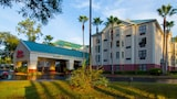 Hampton Inn & Suites Tampa North - Tampa Hotels