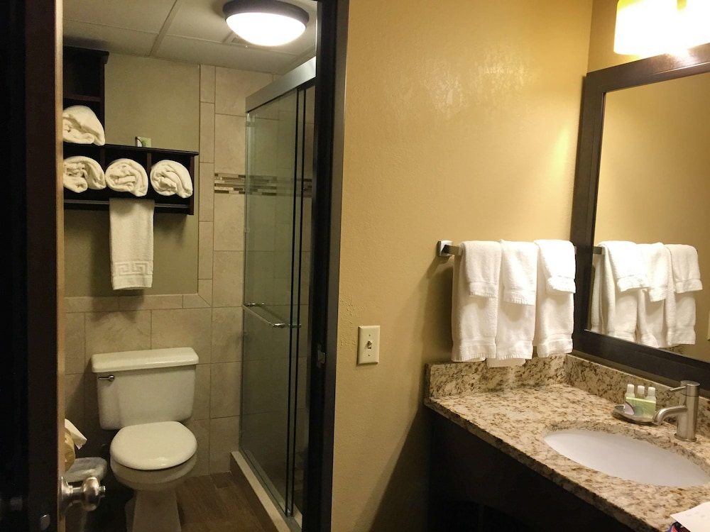 Bathroom, Best Western Derby Inn