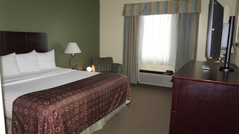 Suite, 1 King Bed, Non Smoking, Refrigerator & Microwave - Guestroom
