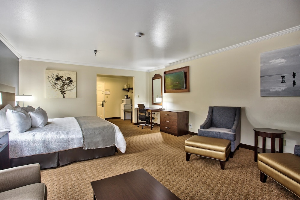 Room, Best Western Mountain View Inn