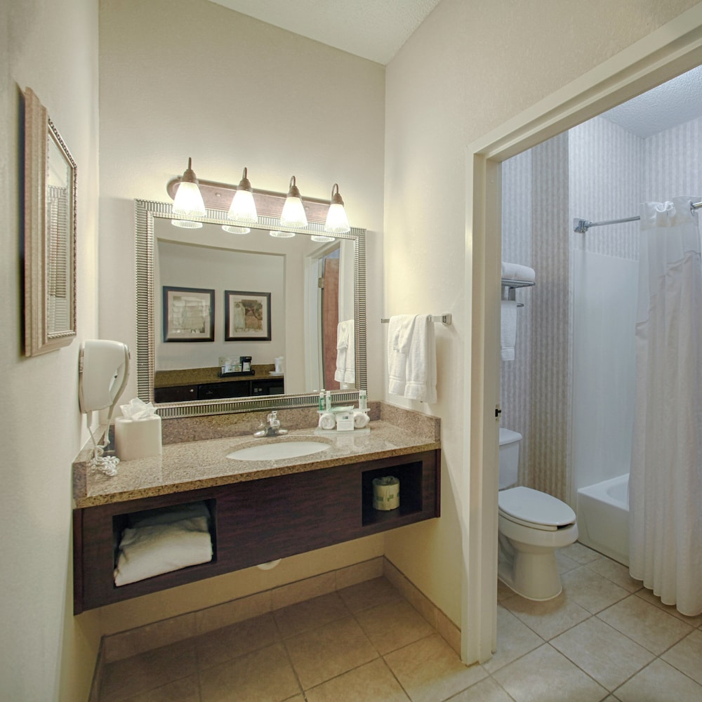 Bathroom, Holiday Inn Express Atlanta - Emory University Area, an IHG Hotel