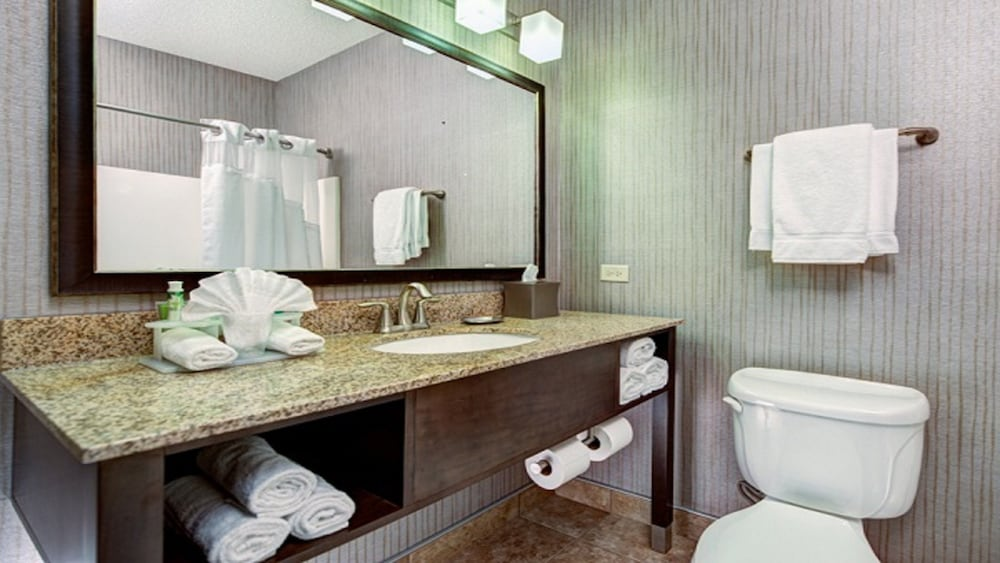 Bathroom, Holiday Inn Express Hotel & Suites Chicago-Deerfield/Lincoln