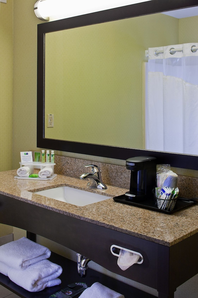 Bathroom, Holiday Inn Express Hotel & Suites Saginaw