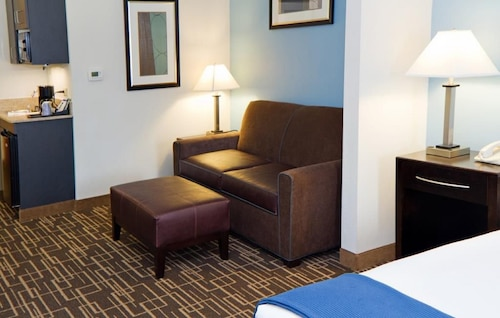 Holiday Inn Express Hotel & Suites Greenville Downtown