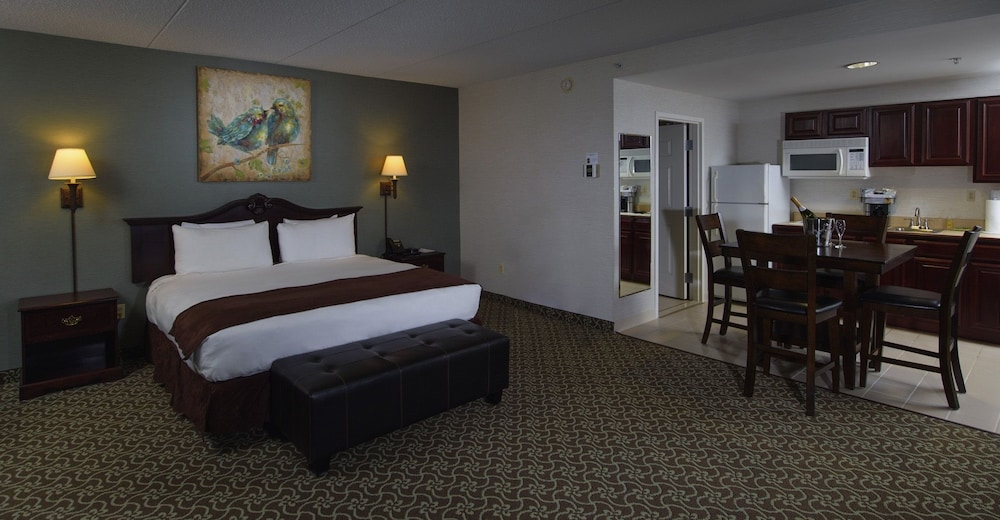 Room, D. Hotel Suites & Spa