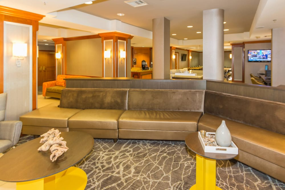 Springhill Suites By Marriott Tampa Westshore Airport In Tampa