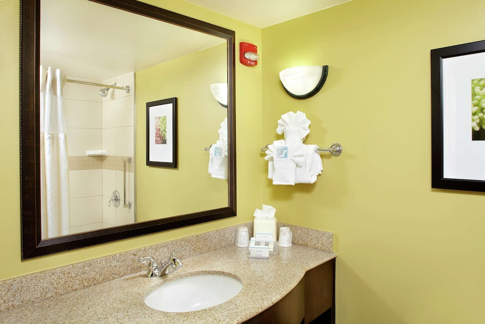 Bathroom, Hilton Garden Inn Tampa East Brandon