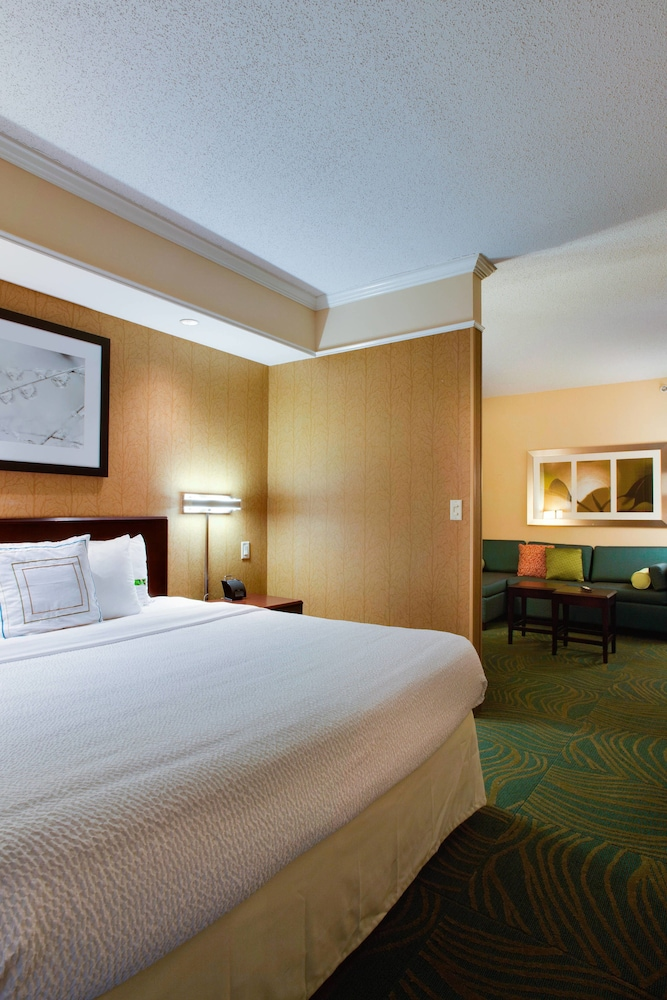 Room, SpringHill Suites by Marriott Savannah I-95