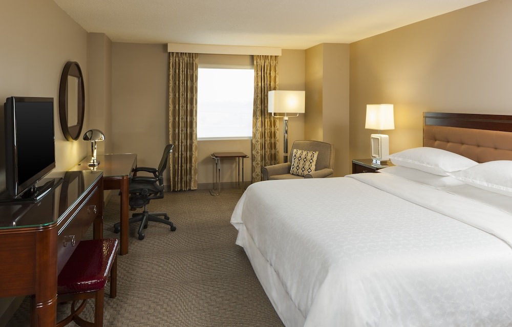 Room, Sheraton Metairie - New Orleans Hotel
