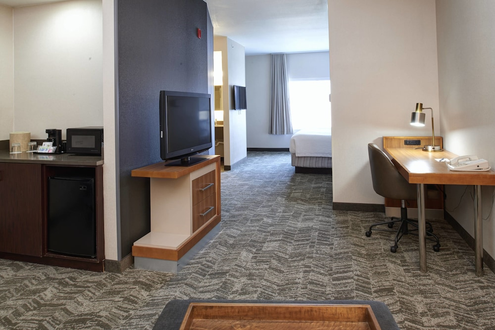 Room, SpringHill Suites by Marriott Frankenmuth
