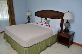 Standard Room, 1 King or 1 Queen Bed - Guestroom