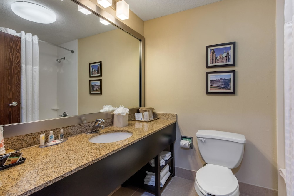 Bathroom, Comfort Inn Horn Lake - Southaven