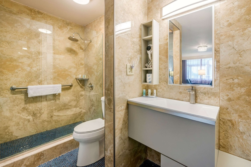 Bathroom, Clarion Inn and Conference Center Tampa - Brandon