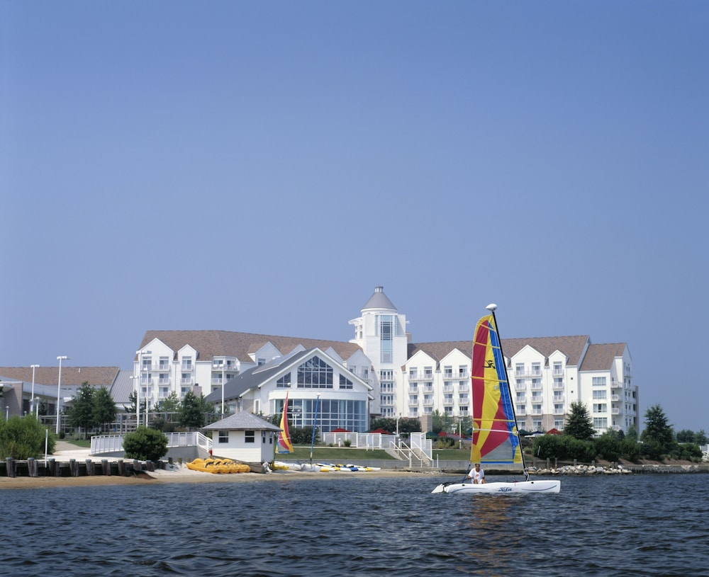 Ecotours, Hyatt Regency Chesapeake Bay