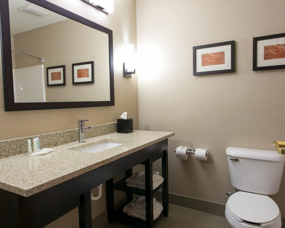 Bathroom, Comfort Suites Benton Harbor - St. Joseph
