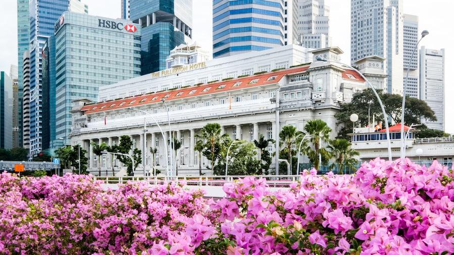 新加坡富麗敦酒店 - SG Clean
