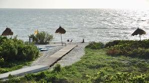 Ubicación a pie de playa, masajes en la playa, buceo con tubo y kayak