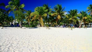 Sulla spiaggia, snorkeling, un bar sulla spiaggia, vela