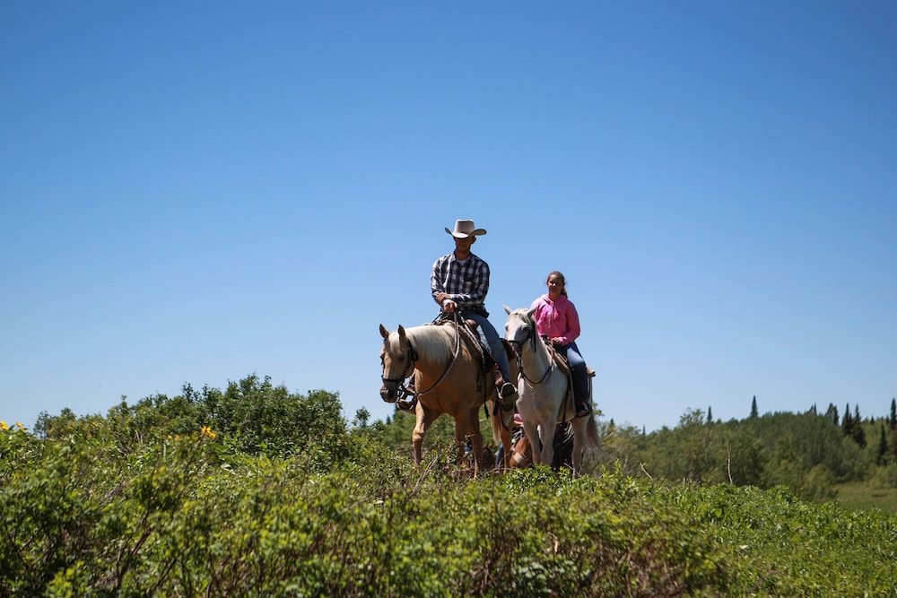 Horse Riding, Grand Targhee Vacation Rentals