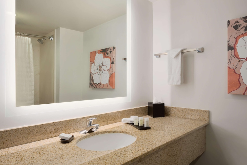 Bathroom, Embassy Suites by Hilton Denver International Airport
