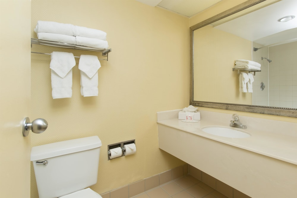 Bathroom, Ramada Plaza Resort & Suites by Wyndham Orlando Intl Drive