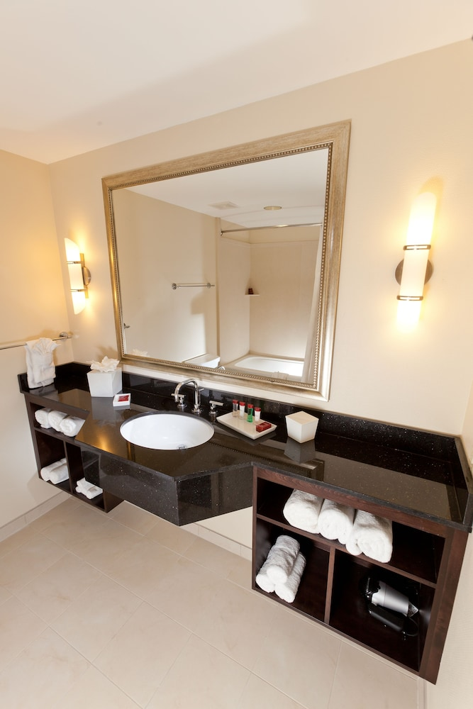 Bathroom Sink, Ramada Plaza Resort & Suites by Wyndham Orlando Intl Drive