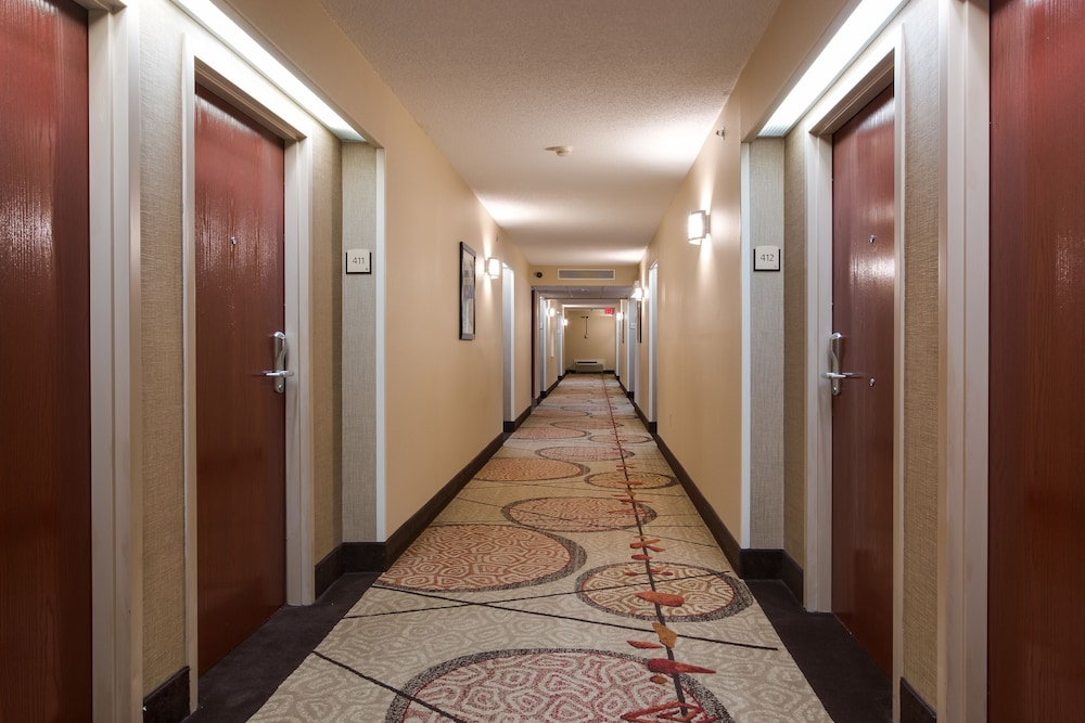 Hallway, Best Western Plus Belle Meade Inn & Suites