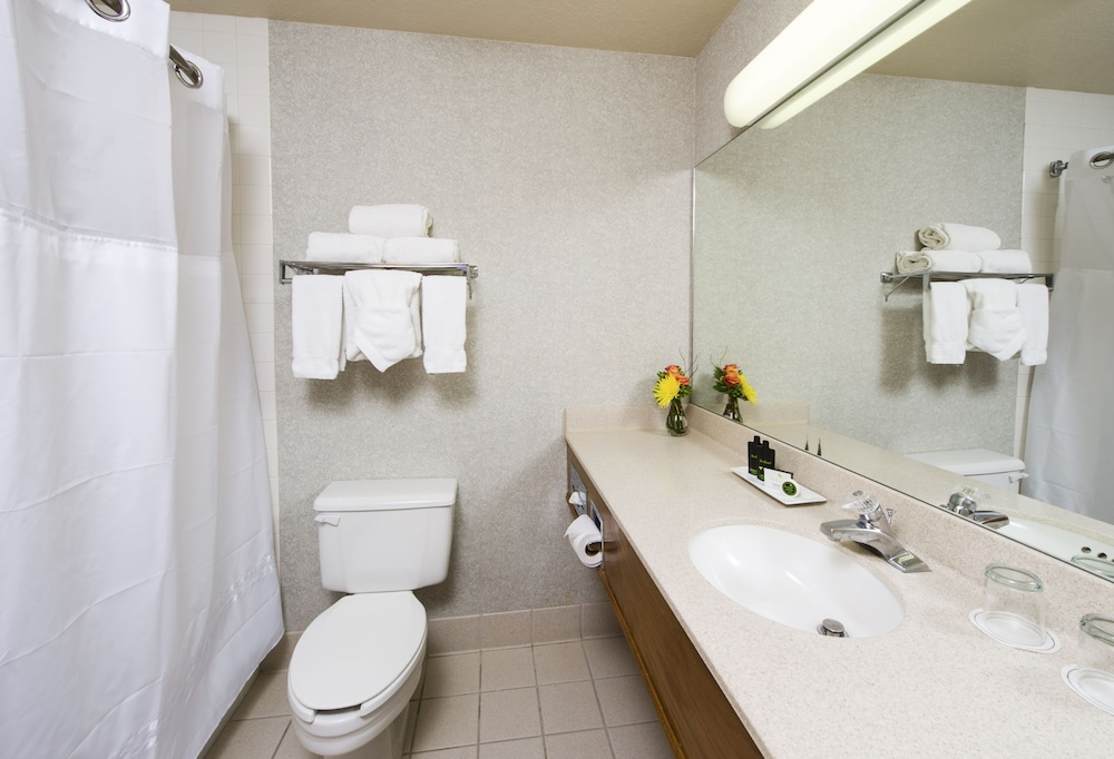 Bathroom, The Inn at Riverwalk, Ascend Hotel Collection