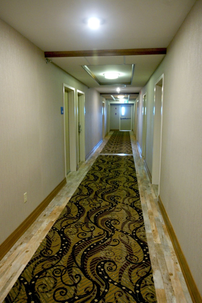 Hallway, Holiday Inn Express & Suites Fredericton