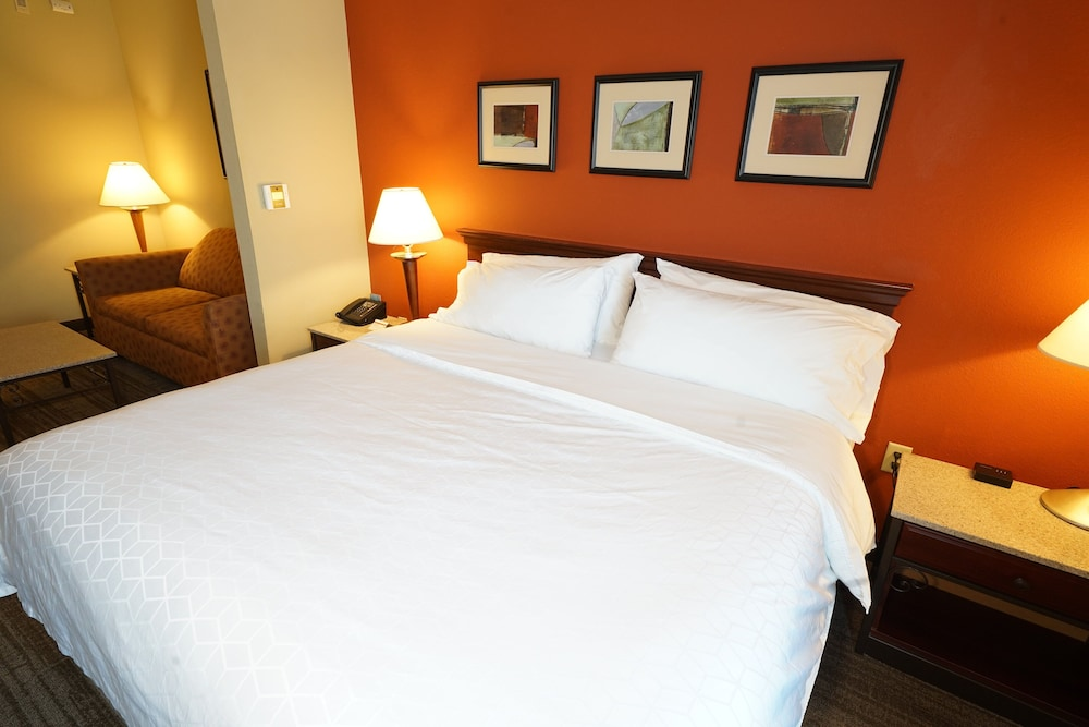Room, Holiday Inn Express Hotel & Suites Tampa Northwest - Oldsmar
