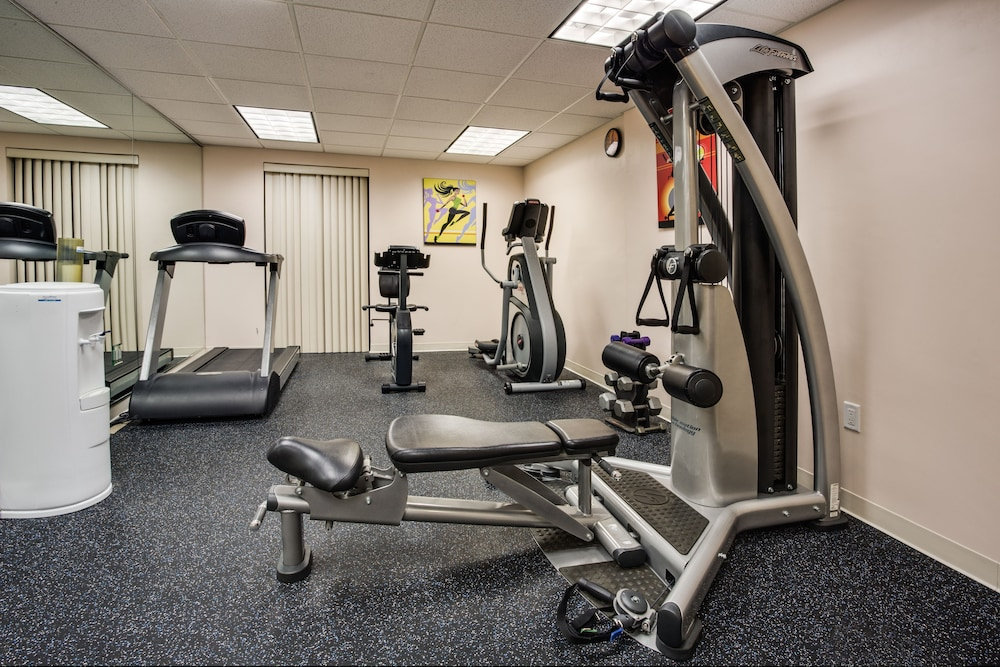 Fitness Facility, Holiday Inn Express Hotel & Suites Tampa Northwest - Oldsmar