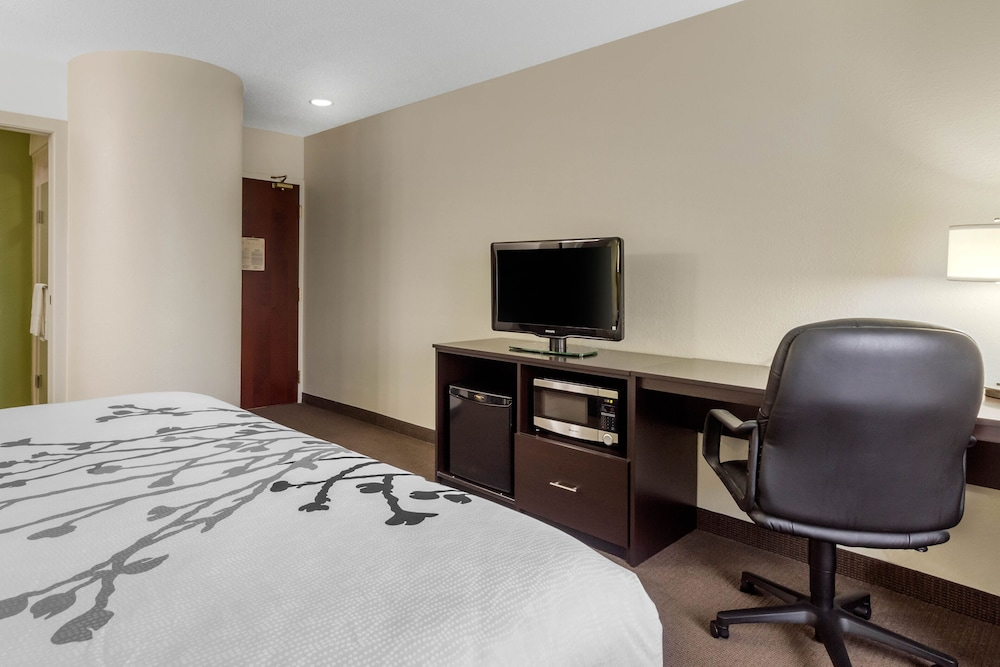 Room, Sleep Inn & Suites Allendale