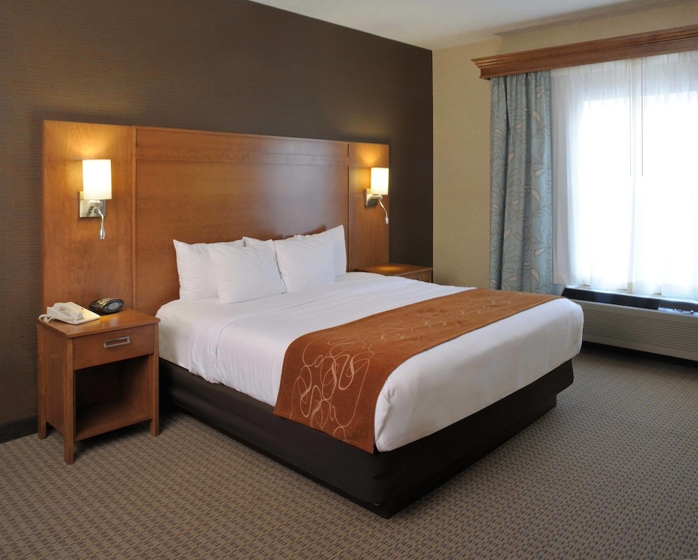 Room, Comfort Suites Hotel and Conference Center