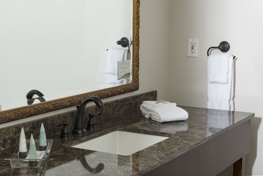 Bathroom, Brasstown Valley Resort & Spa