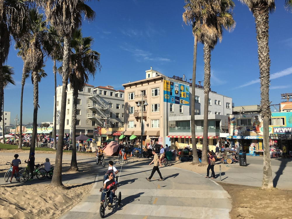 zambiese venice beach - photo#23