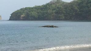 Beach nearby, beach towels, water skiing, motor boating