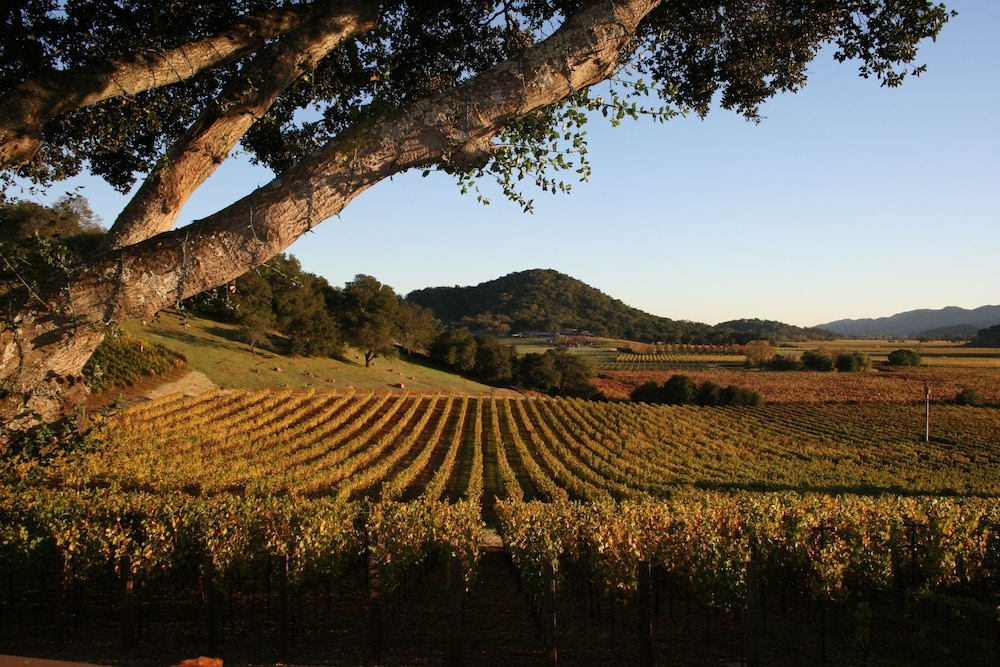 Property Grounds, Calistoga Ranch, Auberge Resorts Collection Napa Valley