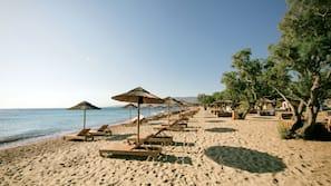 Sulla spiaggia, lettini da mare, ombrelloni, un bar sulla spiaggia