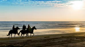 On the beach, black sand, free beach cabanas, sun loungers