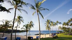 Private beach nearby, white sand, free beach shuttle, beach towels