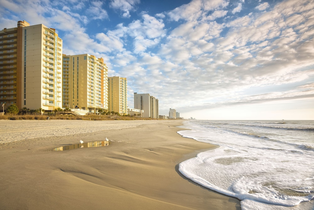 Wyndham Ocean Boulevard North Myrtle Beach Sc 403 South Ocean 29582