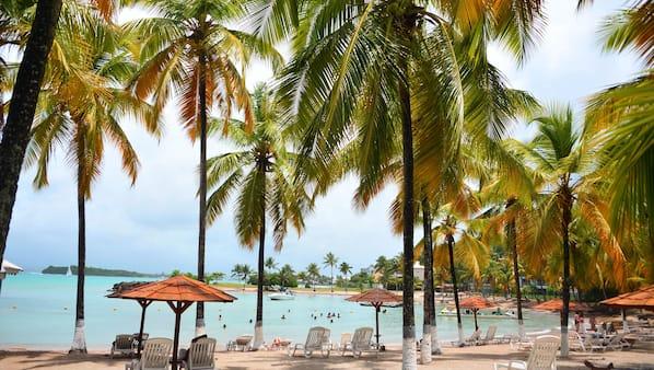 Plage à proximité, sable blanc, parasols, serviettes de plage