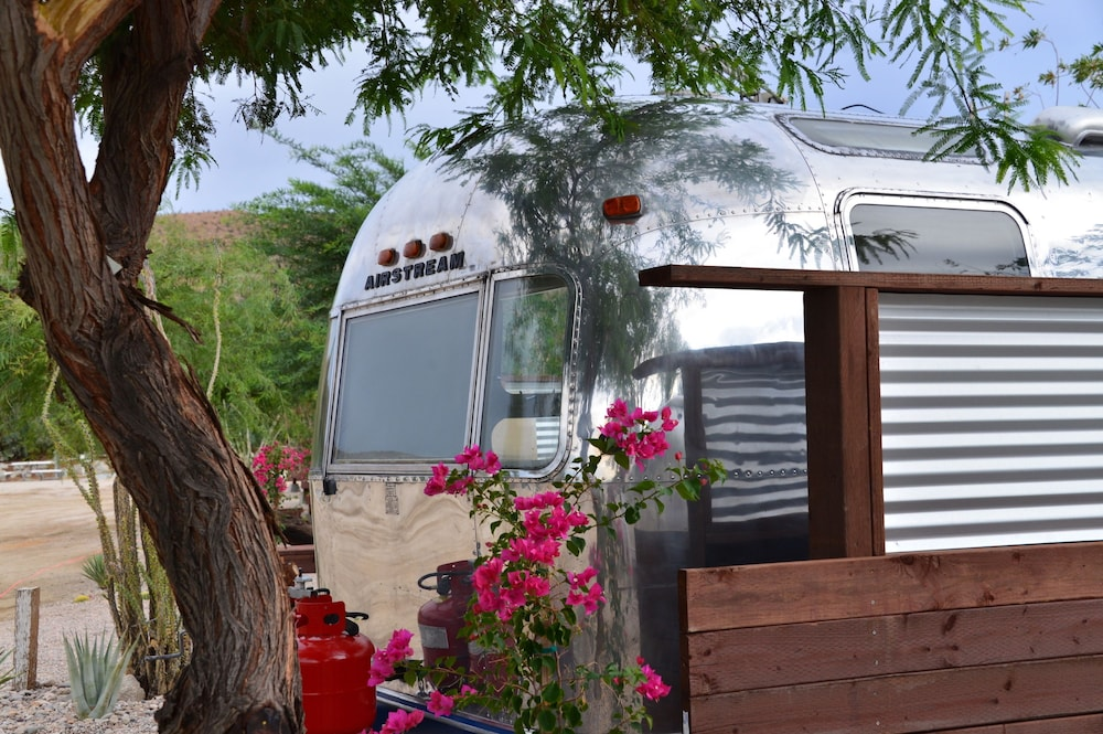 Property Grounds, Palm Canyon Hotel & RV Resort