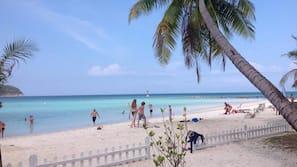 Trên bãi biển, ghế dài tắm nắng, dù trên bãi biển