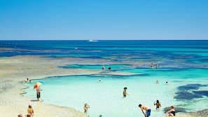 Beach nearby, white sand, 2 beach bars, fishing
