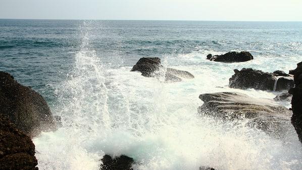 Private beach, black sand, surfing
